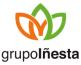 grupoiñiesta_logo
